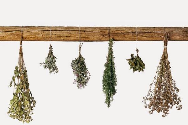 naturalne rośliny ususzone na zioła